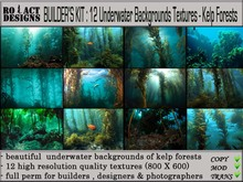 ..::RO!ACT::..DESIGNS 12 Underwater Backgrounds-Kelp Forests