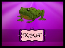 .:::K,M,T:::.Sculpti Green Tree Frog Kit Full Perms