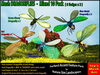 DRAGONFLIES - mesh - 10 Pack (5 designs x2) - nature insect feature forest landscaping dragonfly low prim bug