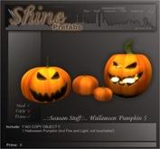 ..::Season::.. Halloween Pumkin 5 (boxed)
