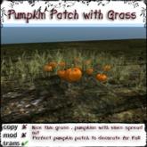 @Incendia Pumpkin Patch Thin Grass