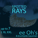 7 SPOTTED RAYS L XL XXL flexi | free-roaming
