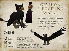 Gryphon Fledgeling Avatar