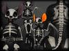 Skeletal Bat - Chinchilla Furry Mod BOM