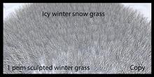 winter grass 5