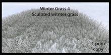 winter grass 4