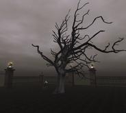 Dead Tree 4