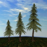 Tree System: Rustica - LIGHT Pine Tree Forest Pack