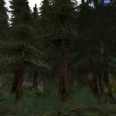 Tree System: Rustica - Pine Tree Forest Collection
