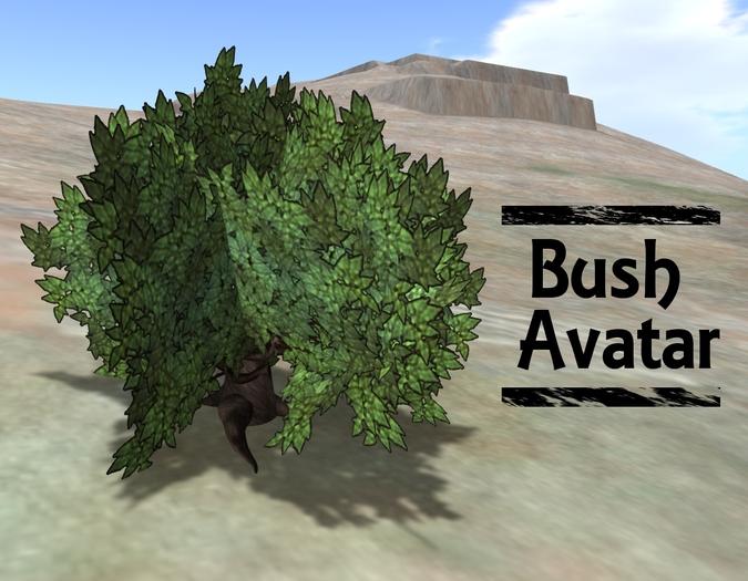 Bush Avatar