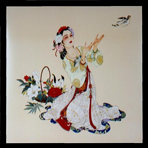 Chinese Picture - Woman