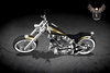 PIXLIGHTS ROAD KING (metallic gold)