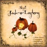 [DDD] Jack-o-lantern (Skull)