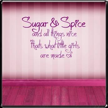 *~LT~*  Sugar & Spice Wall Art Decal