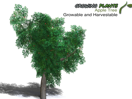 Growing Plants – Mesh Growable and Harvestable Apple Tree - Promotion!!
