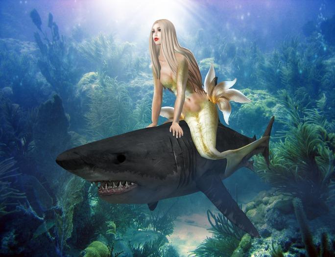 Boudoir-Wearable Shark
