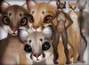 Cougar - Earthy Pack - Chinchilla Furry Mod BOM