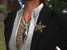 *US Marshal Star Badge*