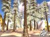 Winter coniferous forest - spruce 4design 12 pcs M/T