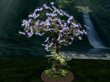 Shrub with flowers and small plants , very realistic with true 3D Foliage and Leaf, Copy