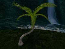 Palm with realistic foliage shape, Copy&Modify