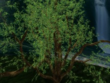 Summer / Spring Tree, Copy&Modify