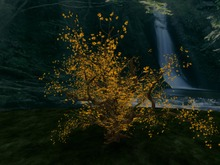 Autumn Big Tree, Copy&Modify