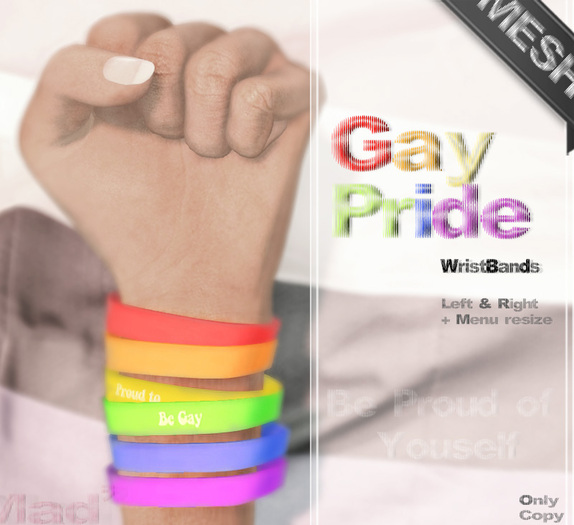 Mad' - Gay Pride - WristBands