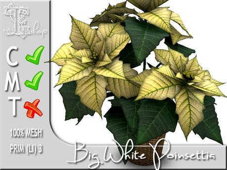 Terrashop - Big White Poinsettia  100% original mesh