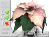 Terrashop - Small Pink Poinsettia    100% original mesh