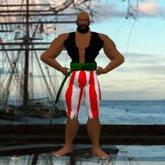 Pirate Boson
