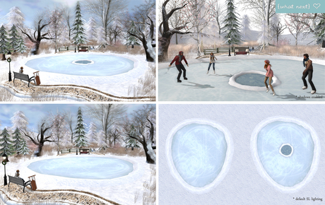 {what next} Winter Iced-Over Pond (Mesh)