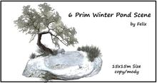 Winter Pond Scene By Felix