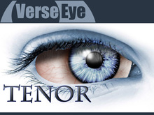 MESH - Tenor - Grey Blue - Artistic Eyes by VerseEye