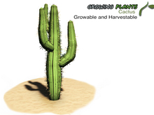 Growing Plants – Mesh Growable and Harvestable Cactus Plant Sapling