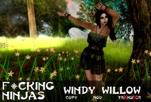*FN* Windy Willow Pose