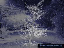One Prim TRUE Tree, True 3D Trunk, True Foliage, 2 Foliages and 3 Shapes, Special Winter Edition, Copy&Modify