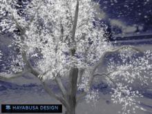 Winter Tree, Copy&Modify