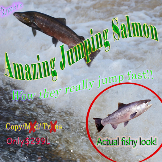 Amazing Jumping Salmon
