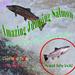 Salmon jumping . original copy
