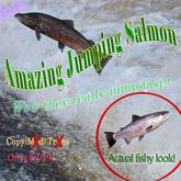 Erstaunlich Jumping Salmon