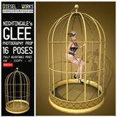 Nightingale's Glee - Bird Cage Photography Prop