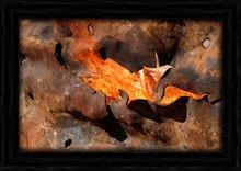 TRIMMER BAY ~ NM-B003-B ~ Rust Bucket Fire 01