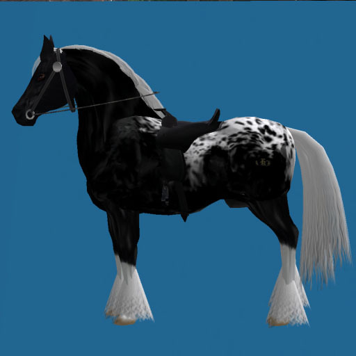 HORSE SWAP CARD~ MODERN WIDE~BLACK DRAFT HORSES WORKING LAND#9L