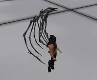 AMU - Skeletal Wings!