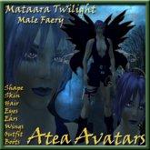 Mataara Twilight Male Faery