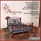 Romance! La Mexicana Wrought Iron Bed