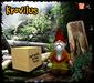 Krovilus gnome adv 4