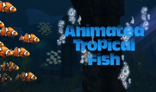 Two Peas in a Pod~Tropical Animated Schools of Fish