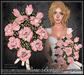 [Wishbox] Premier Rose Bouquet (Pink Tip Roses) - Valentine's Day gift, romantic present, Baker's Dozen (13)